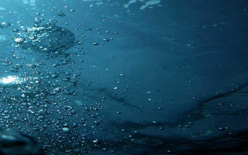 perizia danni da acqua